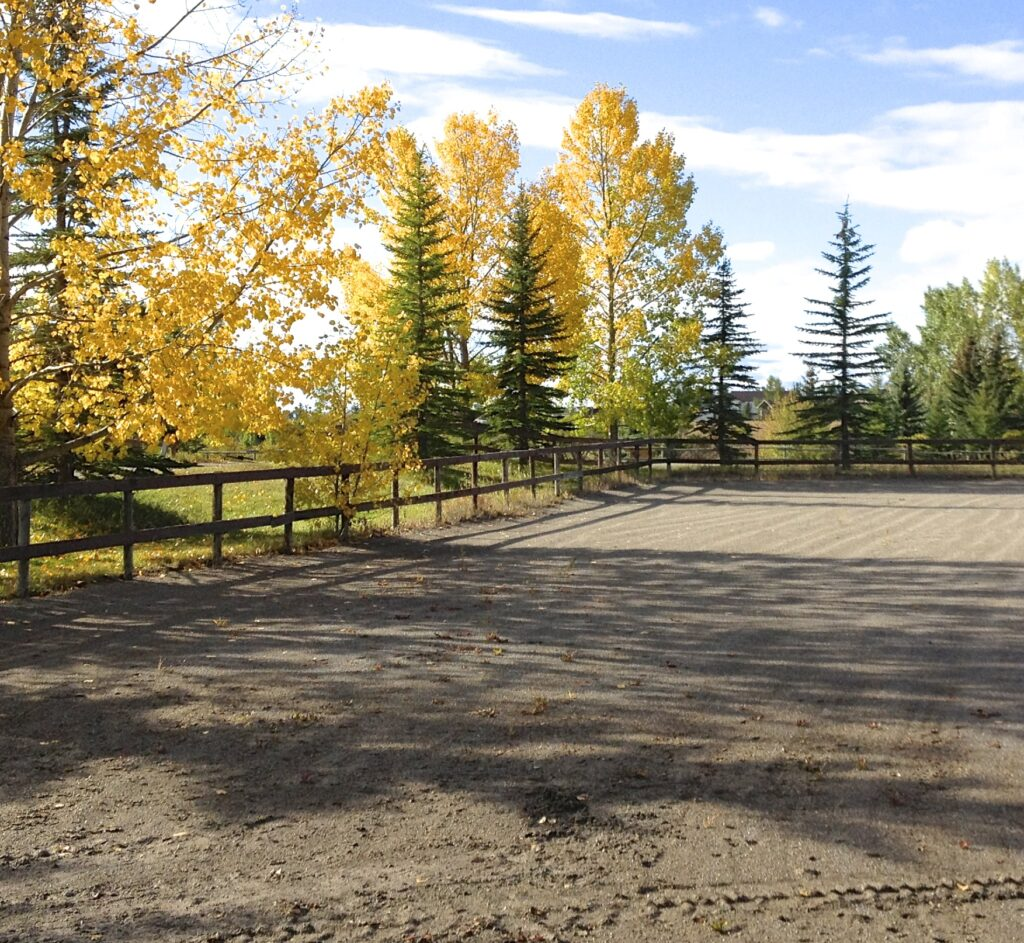 DMC Stables outdoor riding arena